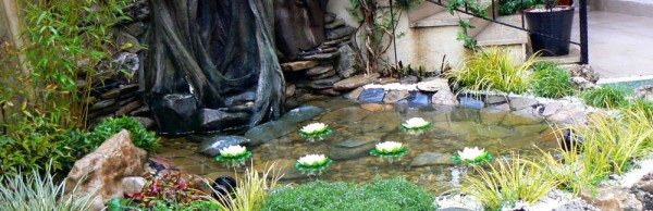Japon Bahçesi Peyzaj Uygulama