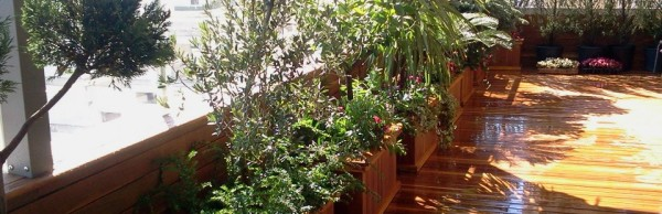Teras Bahçesi Uygulama
